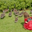 Geese and child — Stock Photo #11998864