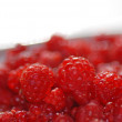 Raspberries — Stock Photo #11999453