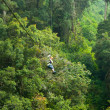 Canopy Tour — Stock Photo #12001242