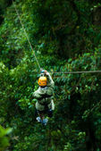Canopy tour — Stockfoto