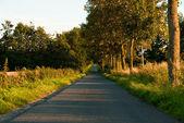Země silnice — Stock fotografie