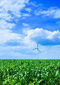 Clean energy — Stockfoto