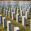 Veterans Memorial National Cemetary — Stock Photo