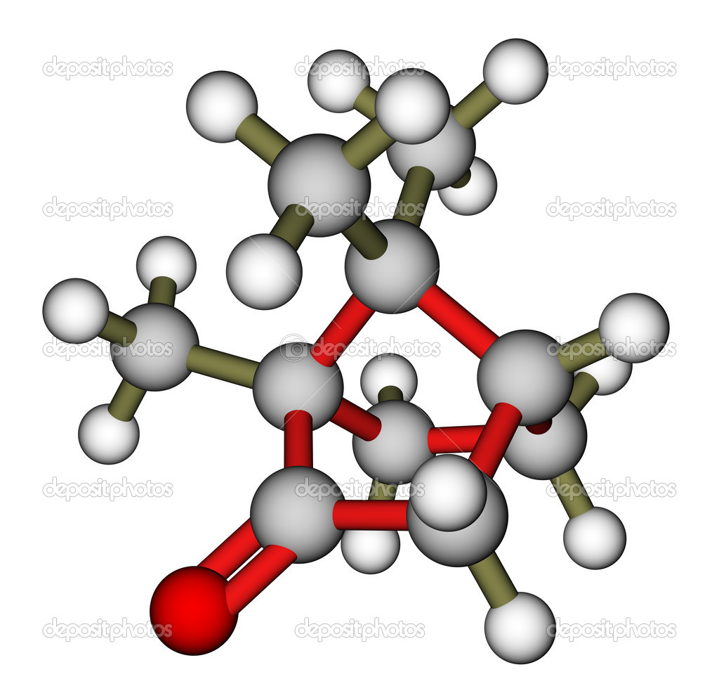Camphor 3D molecular model — Stock Photo #12049291