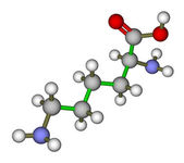 Lysine molecular structure — Stock Photo