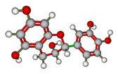 Epicatechin molecular model — Stock Photo