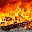 Oven fire — Stock Photo #12051414