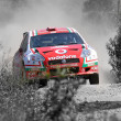 World rally car — Stockfoto #12051844