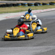 Kart Race — Stock Photo #12052689