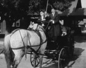 Gentlemen driving carriage with horse hitched backwards — Stok fotoğraf