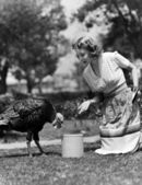 Woman luring turkey to hatchet with corn — Stock Photo