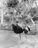Woman riding ostrich — Stock Photo