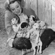 Woman with puppies — Stockfoto