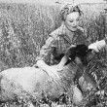 Woman feeding sheep with bottle — Stock Photo