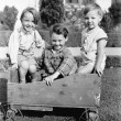 Three boys sitting in a push cart and smiling — Stock Photo