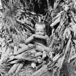 Boy eating a corn cob in a corn field - Foto de Stock  