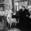 Man looking fearful at two dogs in a butcher store — Stockfoto