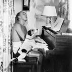 onun yanında köpeğiyle bir piyano çalan adam — Stok fotoğraf