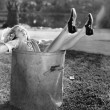 Woman fallen in the garbage bin at the roadside - Stock Photo