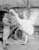 Man with large fake ostrich — Stock Photo