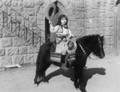 Cowgirl on pony — Stock Photo