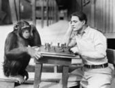 Man playing chess with monkey — Stock Photo
