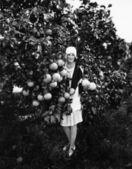 Greyfurt tutan ve bir meyve bahçesinde duran genç bir kadın portresi — Stok fotoğraf