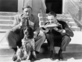 Two men playing two harmonicas with an English Setter — Stock Photo