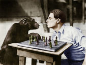 Profile of a young man and a chimpanzee smoking cigarettes and playing chess — Photo