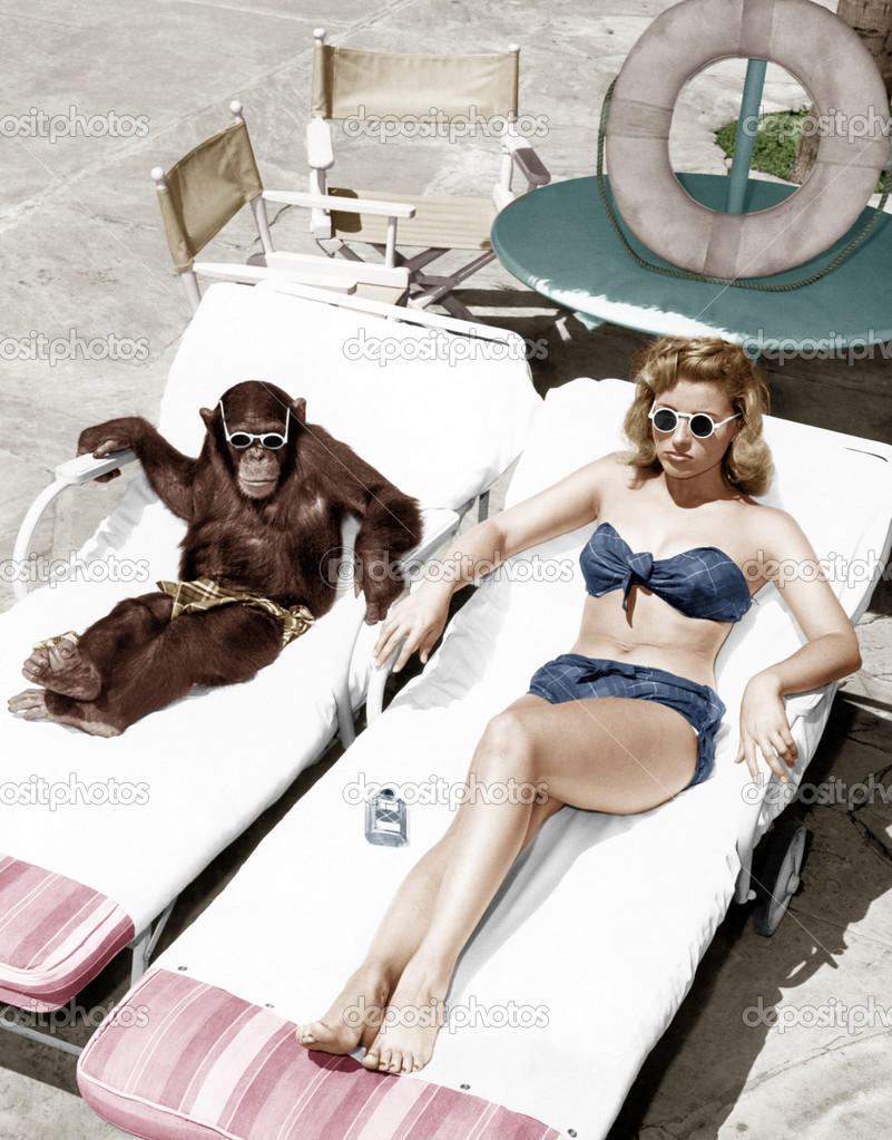 Chimpanzee and a woman sunbathing  Stock Photo #12302960