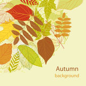 Autumnal bright leaf background vector — Stock Vector