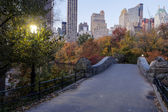Central Park Gaptow bridge in autumn — Stock fotografie