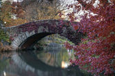 Central Park Gaptow bridge in autumn — Foto Stock