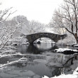 Gapstow bridge - Central Park — Stock Photo #12136397