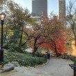 Central Park autumn near pond - Zdjcie stockowe