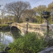 Bow bridge in spring Central Park — Stock Photo