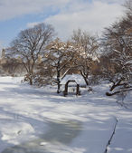 Central Park after ice storm — Stock Photo