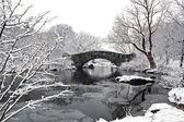 Puente de gapstow - parque central — Foto de Stock