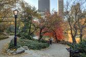 池の近くのセントラルパークの秋 — ストック写真
