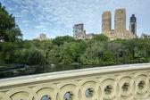 Central park'a yay köprüsü — Stok fotoğraf