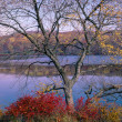 Harriman State Park in autumn — Stock Photo