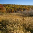 Autumn scene in Harriman State Park — Stock Photo