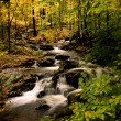 Autumn upstate New York — Stock Photo