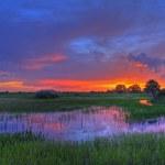 Everglades — Stock Photo #12257341