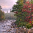 Stock Photo: Swift River at dawn