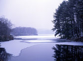 Frozen lake in forest, winter upstate New York — Stock Photo