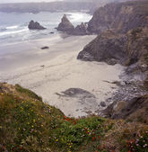 Northern California beach — Stock Photo
