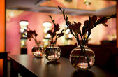 Nightclub interior - flower decoration. Focus in on the first fl — Photo