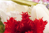 Beautiful floral decoration — Stock Photo