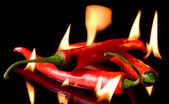 Very hot chili pepper — Stock Photo